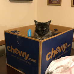 This MY box and you can't have it!