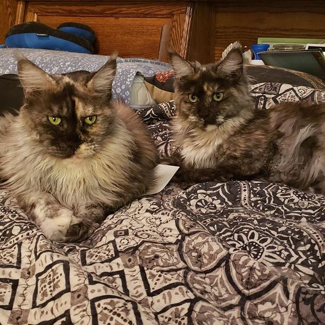 Oda Mae And Molly P