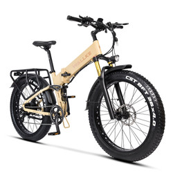 Electric Bikes collections