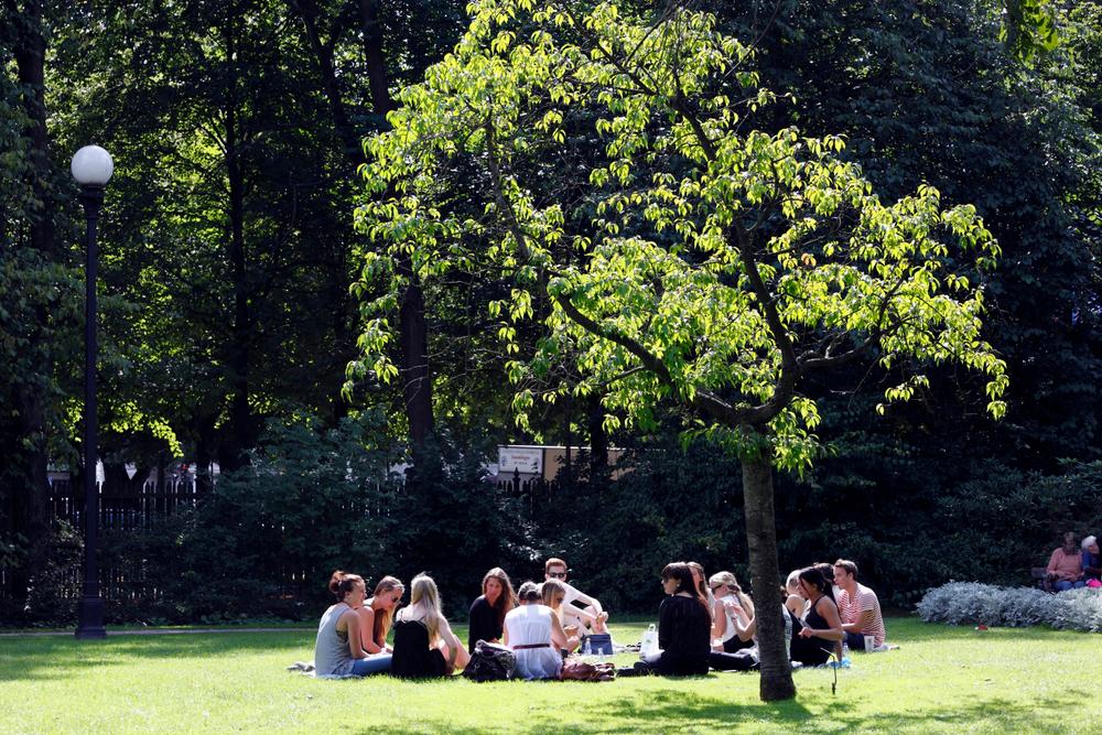 trädgårdsföreningen13