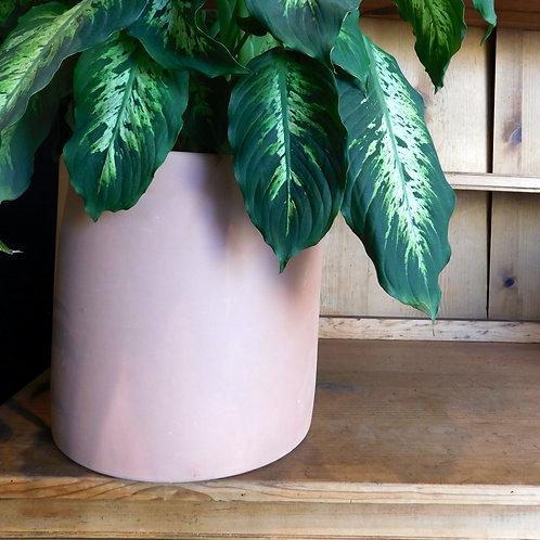 Large Italian Terracotta Pot