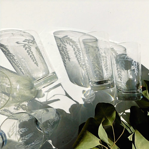 Vintage Etched Glass Tumblers (set of 7)