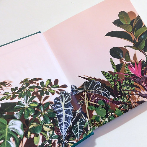 House Plants Book