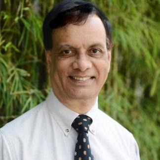 Professor Vinod Thomas, NUS Professor