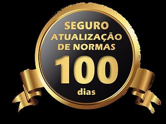 seguro-atualização-das-normas-100-dias.p