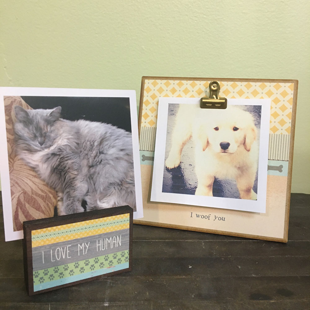 cute frames and photo holders