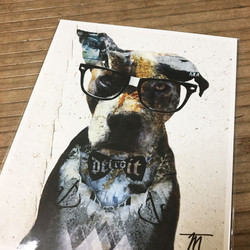 detroit dog