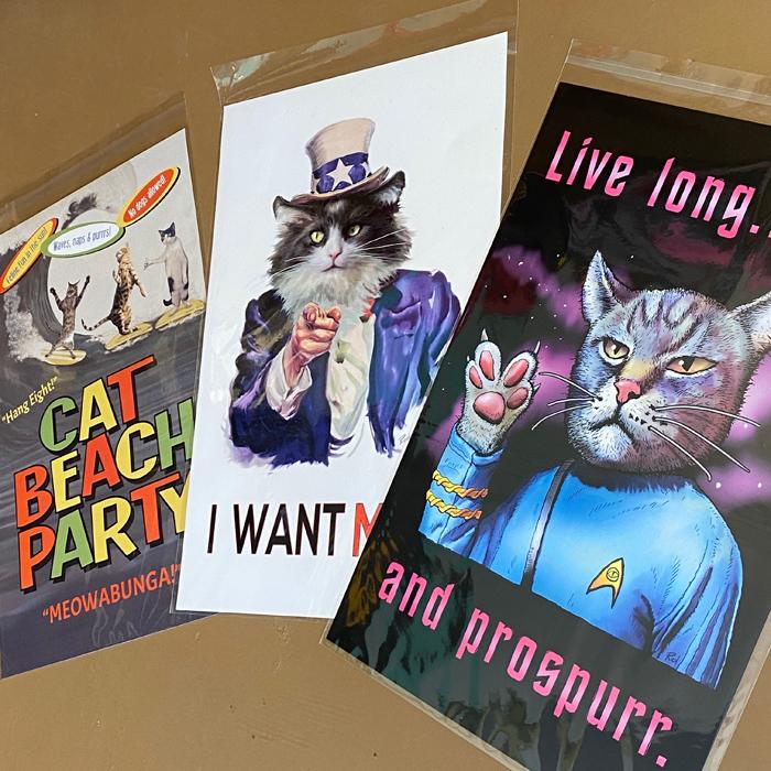 cat lover humor