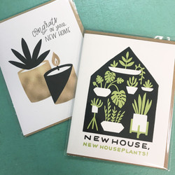 come bearing a new house plant