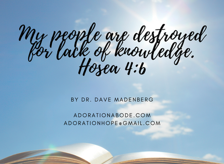 Seek Knowledge. By Dr. Dave Madenberg