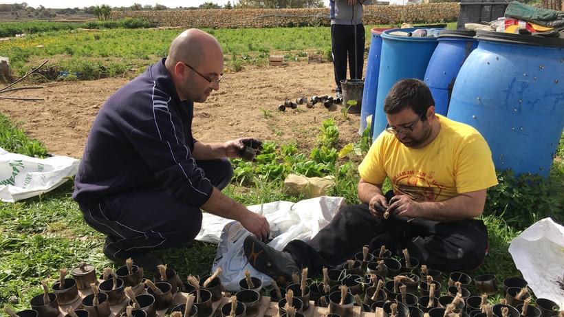 Preparamenti għall mixgħela tas-Salib