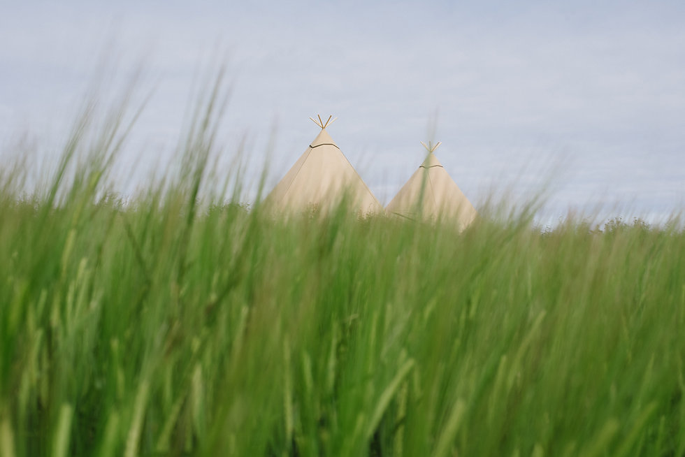 tipis in cornwall