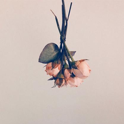 art-direction_flowers_old2_kokoro.jpg