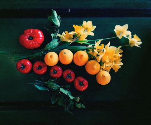 art-direction_flowers_olive5_kokoro.jpg