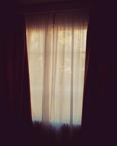 artworks_window_3_kokoro..jpg