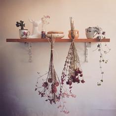 artworks_rose_1_kokoro.JPG