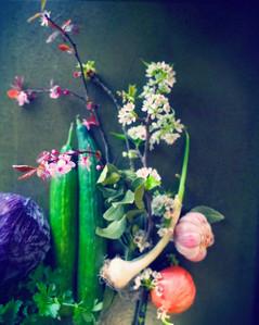 art-direction_flowers_olive1_kokoro.jpg