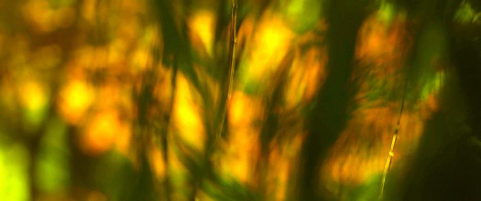 film-production_luxury_ville-de-grasse_1