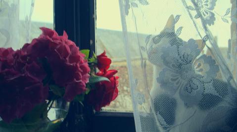 filmmaking_filmproduction_portrait_estel