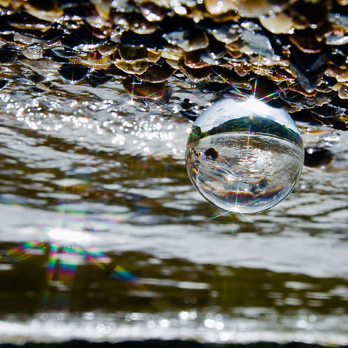 lensball+art+river+rock+photography+prin