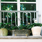 Flowers on balcony of homeowners property for sale or rent