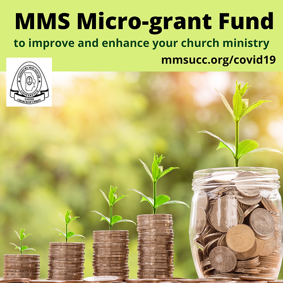 MMS Microgrant Fund.png