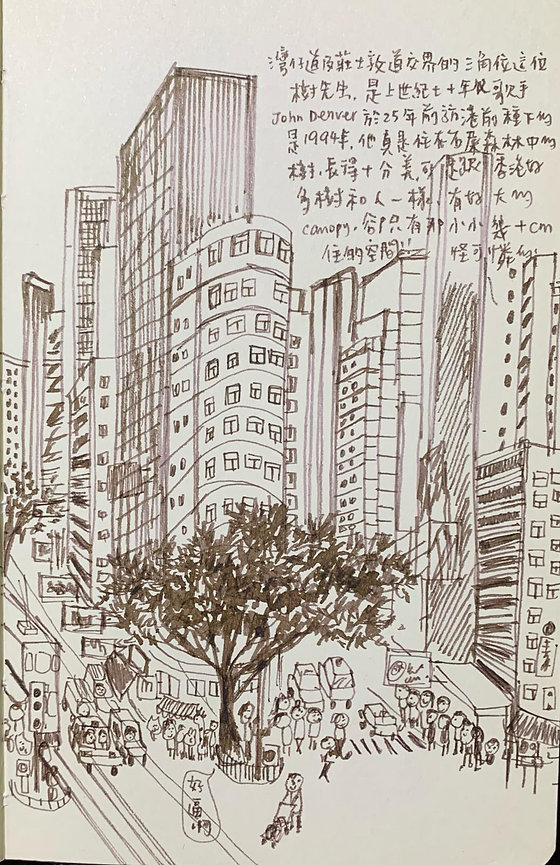 dear tree wanchai road.jpg