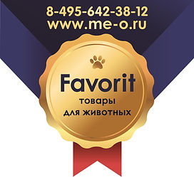 Логотип Фаворит.jpg