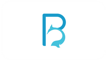 BluePhin Technologies