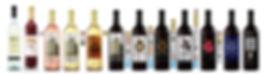 Montaje botellas 2020 solo casa 3.jpg