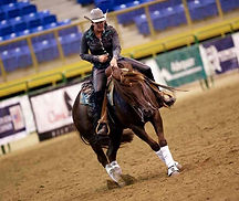 Tracy Reining Horses, Longmont, CO.  Holly Tracy-Cure, Trainer