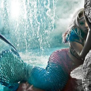 mermaid2  40x66.jpg