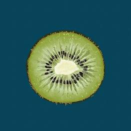 00081-Kiwi.jpg