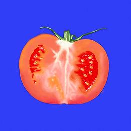 00057-Tomate.jpg