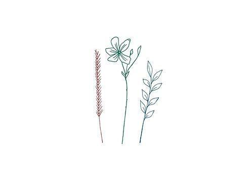 Logo fleurs_edited.jpg