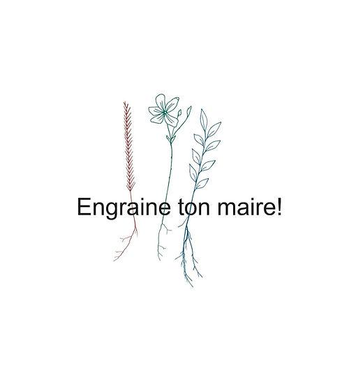 Titre engraine redimensionné_edited_edited.jpg