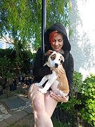 puppy pole