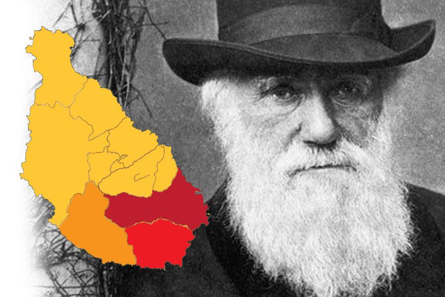 charles Darwin pic