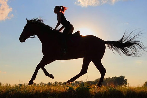 Horseback riding in Ribeira Grande