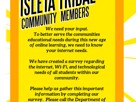 Internet Access Survey