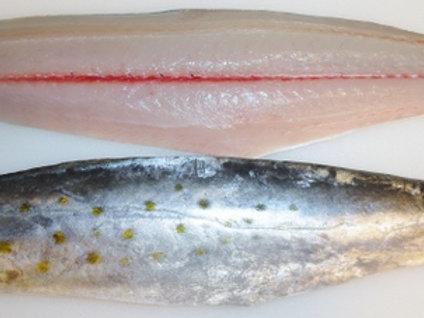 サワラ刺身 Spanish Mackerel Sashimi (250-300g)