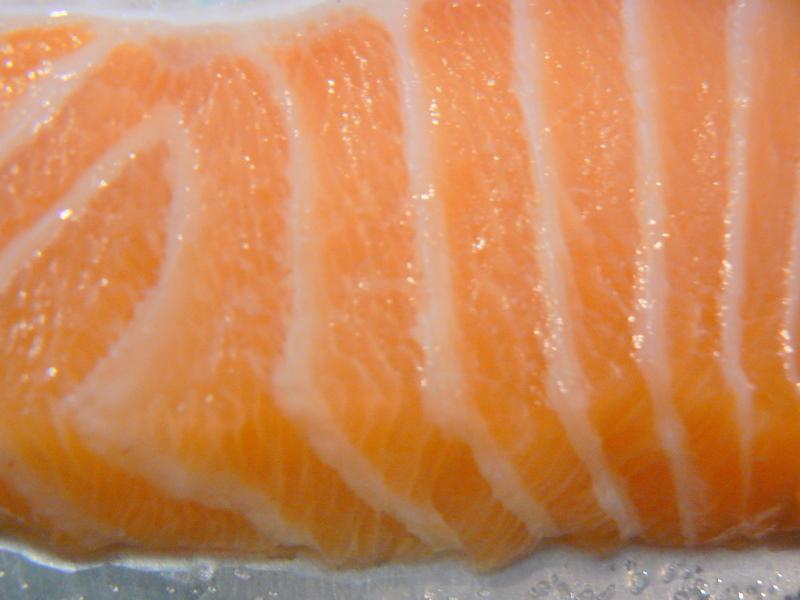 Salmon Farm Raised