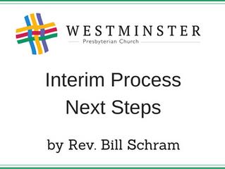 Interim Process Next Steps