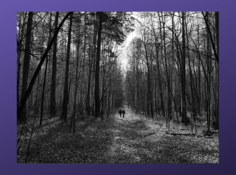 Lent Page graphic 340x252.png