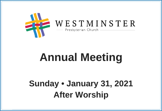 WPC Annual Meeting 2021 519x355.png