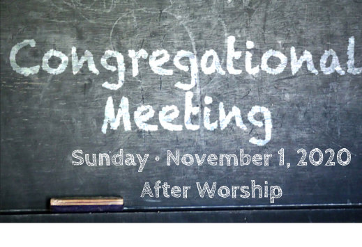 Congregational Meeting 110120 519x355.pn