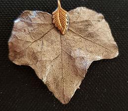 leaf-on-black-15.jpg