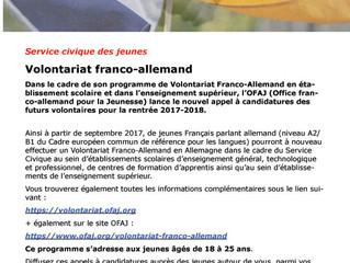 Volontariat franco-allemand : c'est maintenant et avant le 17 mars 2017 !