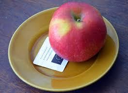 €70 million pour prolonger le soutien aux producteurs européens de fruits