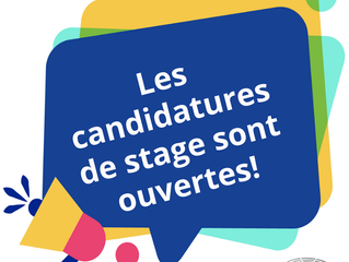Les candidatures pour les stages Schuman sont ouvertes !